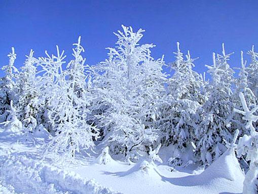 Beskydy - zima v česku